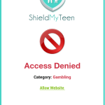 Shield Your Teen from the 5 Biggest Threats on the Internet